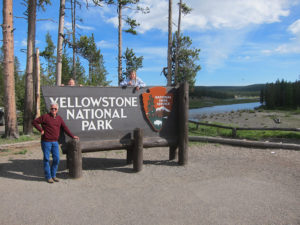 yellowstone guided tours